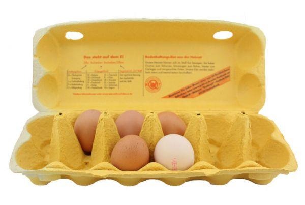 1 Stück 12er Eierschachtel Hartmann gelb S - L